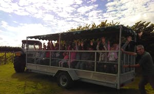 For special occasions trips can be arranged around the vineyard