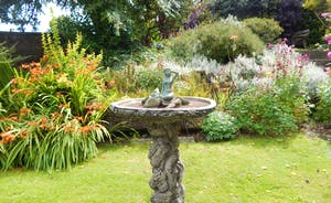 Forest House birdbath in garden
