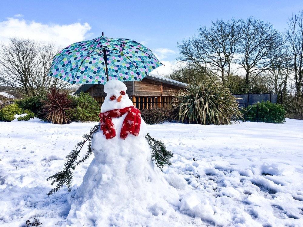 Snowman on TCB's lawn