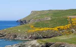 Towards Pentire