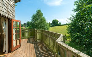 The Treehouse has stunning Somerset  views over our fields grazed by horses and sheep