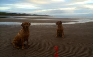 Our dogs love Ettrick Bay , yours would too !