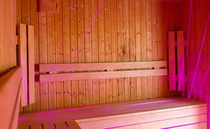 Fuzzy Orchard - The sauna has plenty of room for everyone to sit and chat whilst having a deep cleanse!