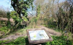 Pig Leg Lane nature reserve (on doorstep of lodges)