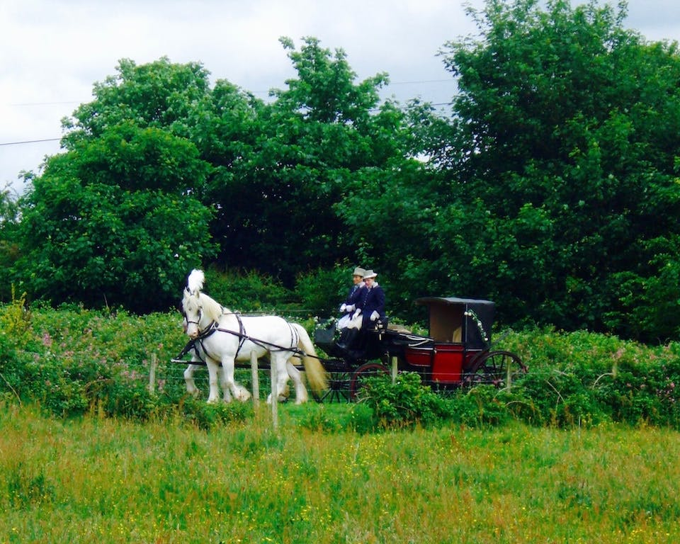 Horse & carriage at Bodfan, Anglesey