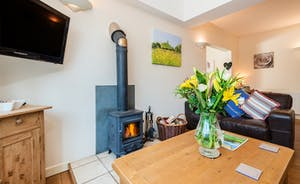There is a cosy wood burning stove at Cornflower Cottage