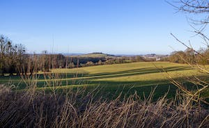 Beaverbrook 30 - Wide open fields, hills in the distance, and the small market town of Ilminster, just over a mile away