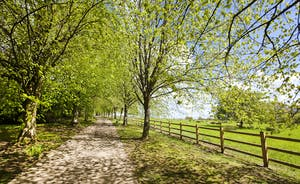Holemoor Stables: A private leafy avenue takes you to this large group rural retreat