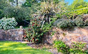 Well maintained mature gardens