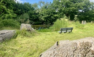 The Cottage Beyond: Sit by the pond a while, dream a little dream...