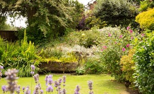 Forest House front garden with lavendar