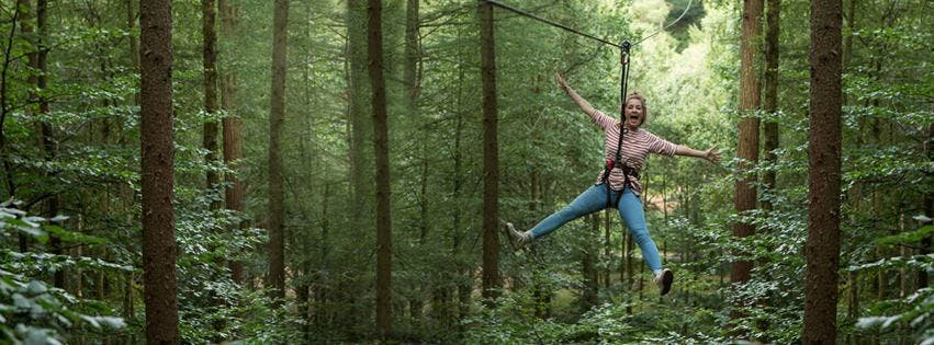 Go Ape experience at Haldon Forest