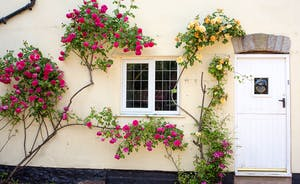 Ilbeare - Roses around the kitchen window - country living perfect!