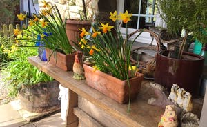 Springtime on our relaxing verandah