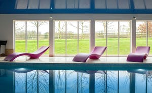 Fuzzy Orchard - The fabulous indoor heated pool