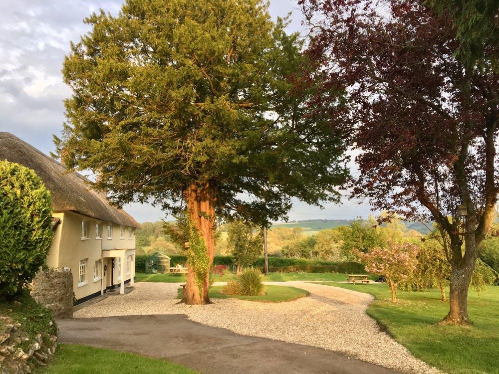 Beautiful Devon Cottage
