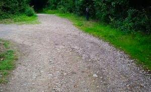 Rosemary Lane leading to Lodges