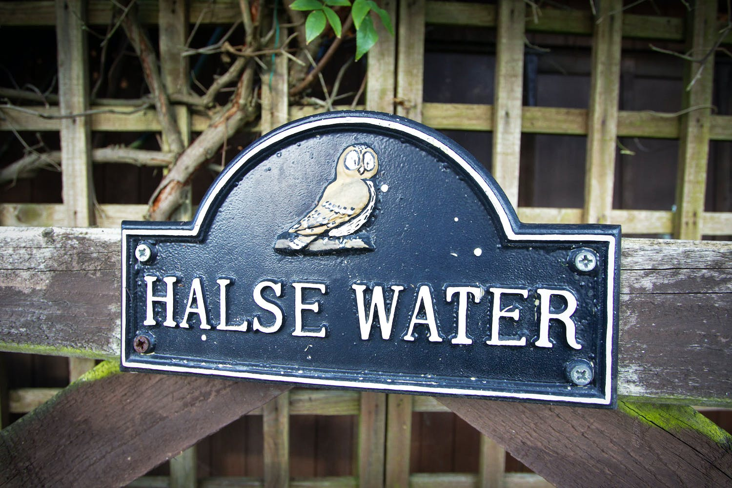 Things to do near Halse Water House in Somerset | Shortbreaks.com