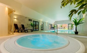Kingshay Barton - There's an amazing spa hall with a heated pool, hot tub and sauna