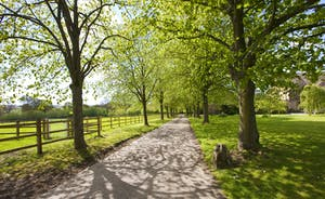 Holemoor Stables - You leave the property via a tree lined drive