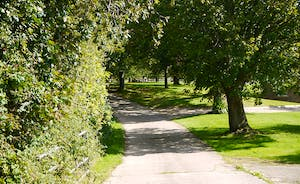 Holemoor Stables - A leafy driveway leads to the accommodation