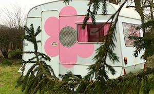 1960's pink hippy caravan