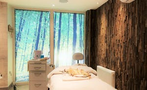 Artspa Treatment Room