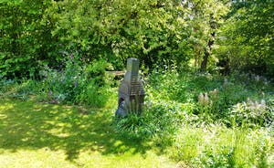 Shady area with wildflower and bluebells - with chiminea