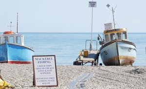 Shires: Have a day trip to Lyme Regis or Beer and go out to sea on a mackerel fishing trip