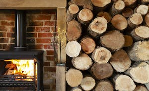 Bumblebee: logs will be supplied so you can all cosy up by the fire