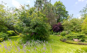 Culmbridge House - The garden will delight young and old alike