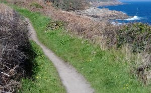 Coastal walk to Mousehole