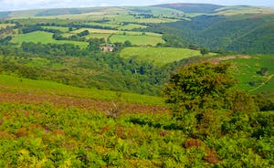 Bossington Hall - Behold the breathtaking scenery of Exmoor National Park!