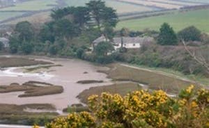 The River Camel