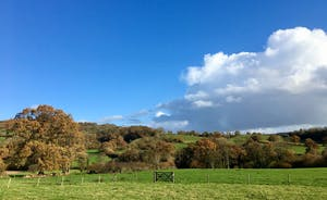 Pippinsands, Stonehayes Farm - Glorious Devon countryside all around, wide open fields, huge skies