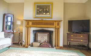 Bossington Hall  - The TV Room features an ornately carved fire surround