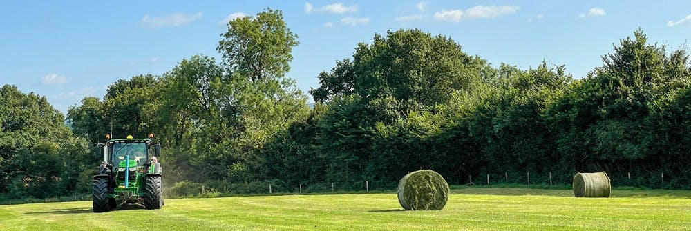 Round silage bales for the cattle to enjoy throughout the winter