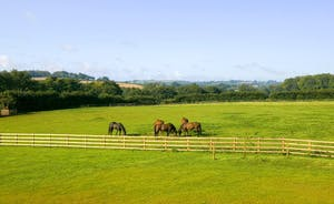 Fuzzy Orchard - Surrounded by beautiful countryside, with stunning open views across the valley