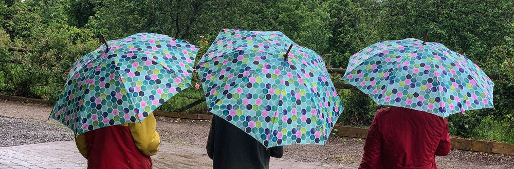 Top 10 things to do in the rain when staying at TCB | Blog
