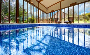 Private Swimming pool with hot tub and sauna.