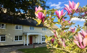 Pippinsands, Stonehayes Farm - A traditional Devon Longhouse for large group holidays