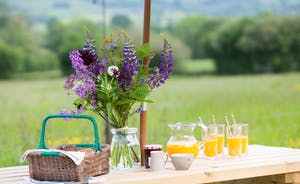 Dippers Rest, Stonehayes Farm - Enjoy unhurried days in the Devon countryside