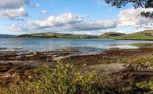 ettrick bay from bird hide