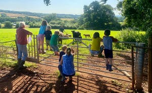 Animals to meet around the farm.