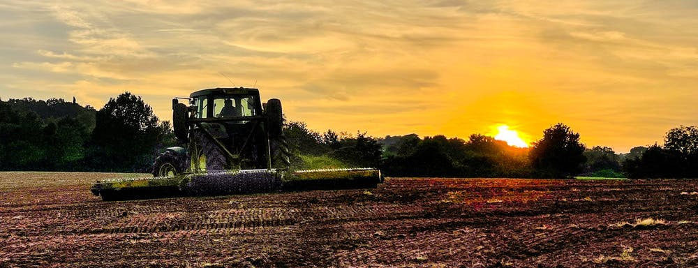 Drilling stable turnips as the sun goes down