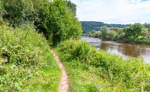 The Benches - At the bottom of the garden a gate leads onto a riverside footpath - part of the Wye Valley Walk