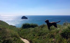 Coastal Path