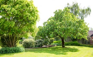 Ilbeare - 2 acres of well kept grounds - leafy trees, mature shrubs, lovely flower beds.... gorgeous!