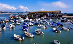 Croftview - Visit the marine aquarium overlooking the harbour at Lyme Regis