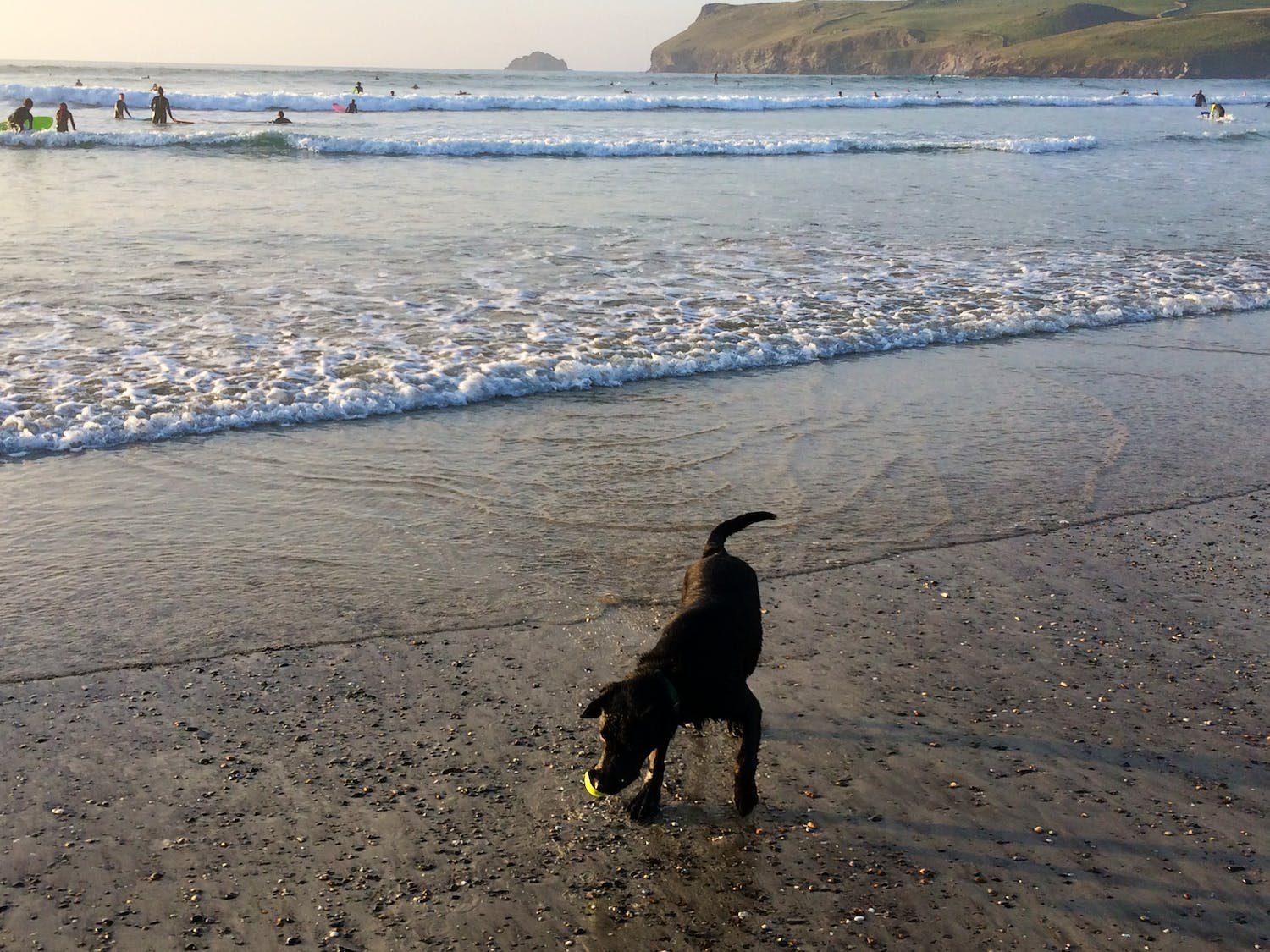 Beach Holidays with Dogs | Holiday Ideas | West Country
